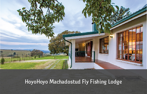 Machadostud Lodge Gallery